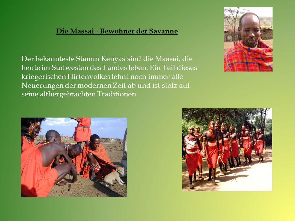 Der bekannteste Stamm Kenyas sind die Maasai, die heute im Südwesten des Landes leben. Ein Teil dieses kriegerischen Hirtenvolkes lehnt noch immer all