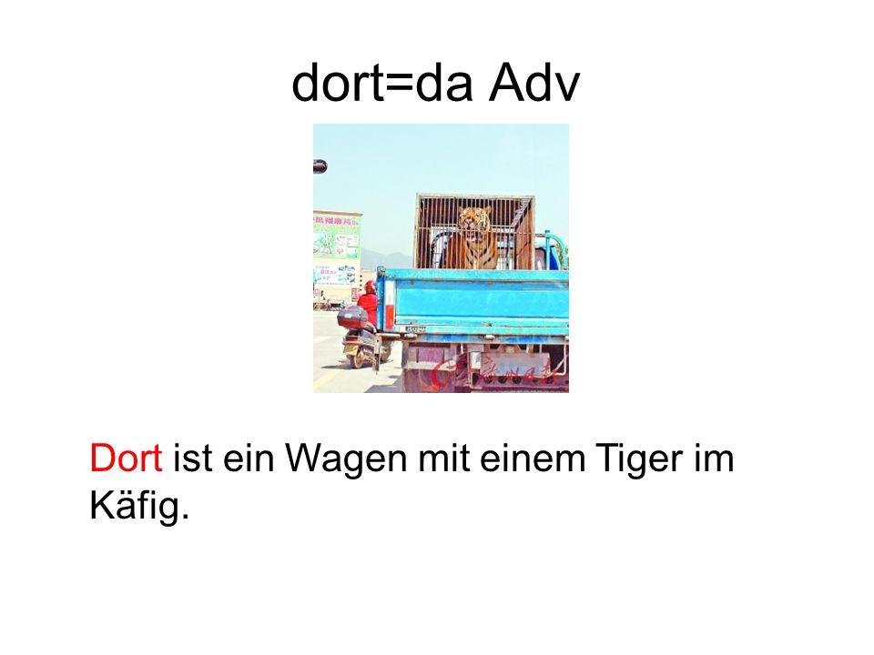 dort=da Adv Dort ist ein Wagen mit einem Tiger im Käfig.