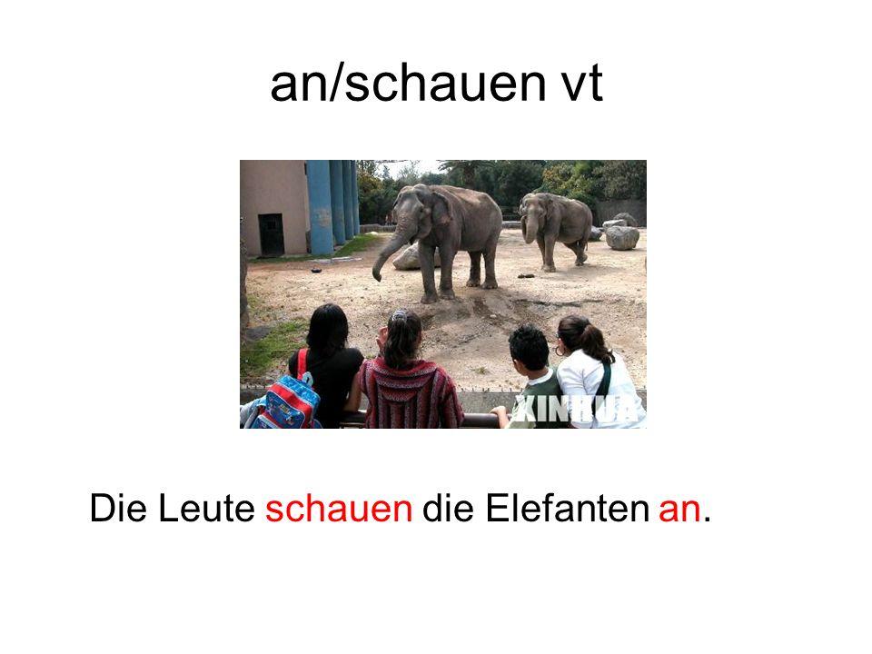 an/schauen vt Die Leute schauen die Elefanten an.