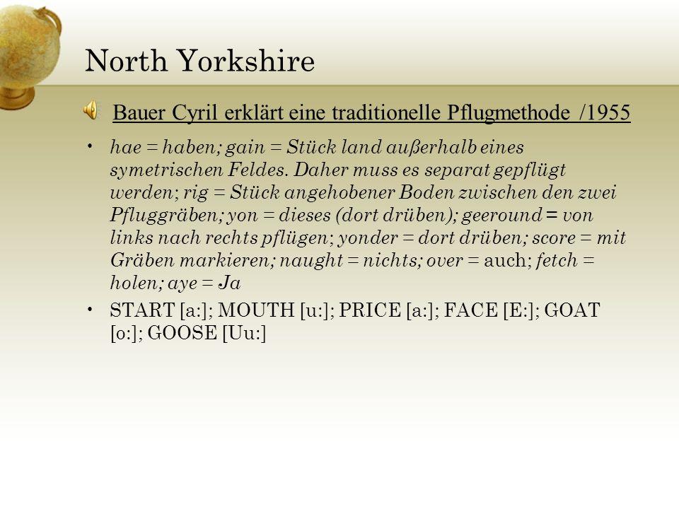 North Yorkshire hae = haben; gain = Stück land außerhalb eines symetrischen Feldes. Daher muss es separat gepflügt werden ; rig = Stück angehobener Bo
