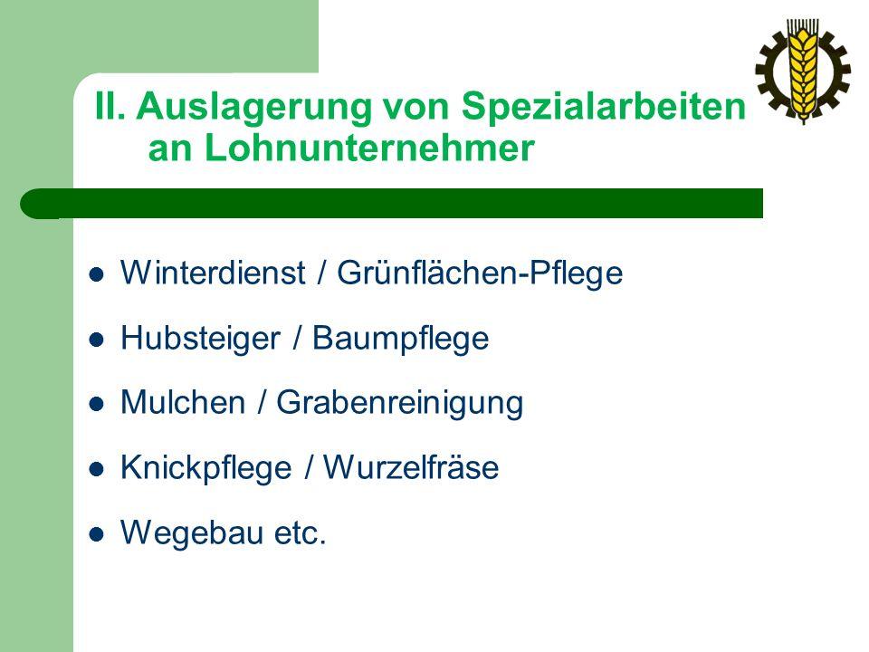 II. Auslagerung von Spezialarbeiten an Lohnunternehmer Winterdienst / Grünflächen-Pflege Hubsteiger / Baumpflege Mulchen / Grabenreinigung Knickpflege
