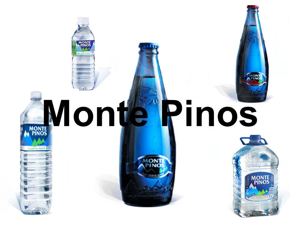 November 2004Reiger, Frey11 Monte Pinos