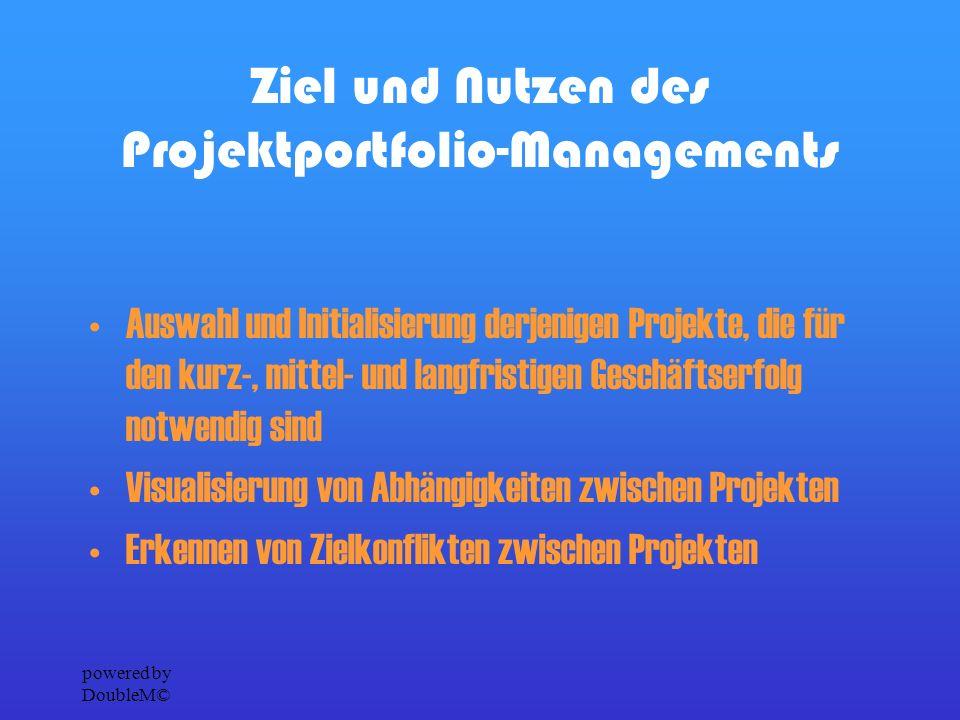 powered by DoubleM© Ziel und Nutzen des Programm- Managements Die Definition von strategischen Programmen beinhaltet die integrierte Betrachtung all jener Maßnahmen und Projekte, die zur Erreichung eines unternehmensweiten, langfristigen Zieles notwendig sind.