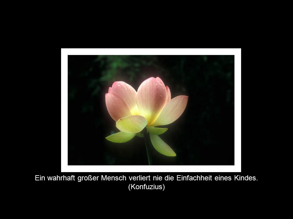 © by Huber, Hutter & Waibel Ein wahrhaft großer Mensch verliert nie die Einfachheit eines Kindes. (Konfuzius)