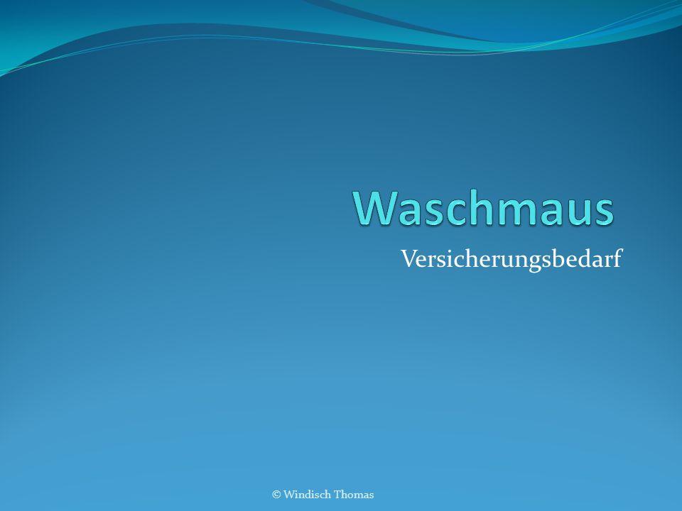 Versicherungsbedarf © Windisch Thomas