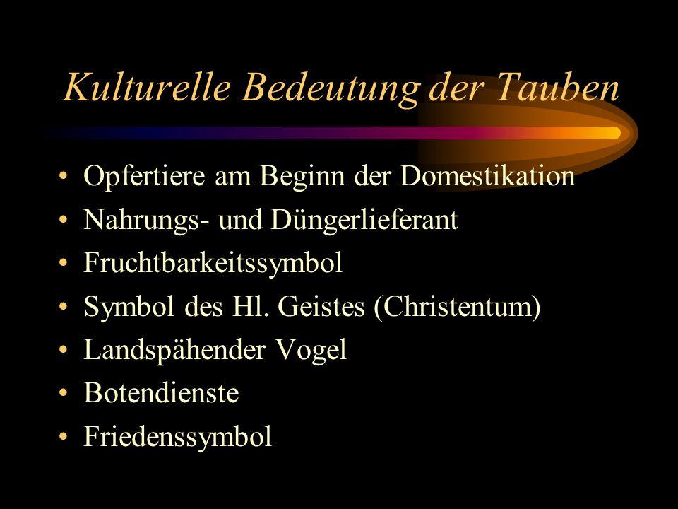 Kulturelle Bedeutung der Tauben Opfertiere am Beginn der Domestikation Nahrungs- und Düngerlieferant Fruchtbarkeitssymbol Symbol des Hl. Geistes (Chri