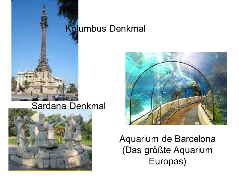Kolumbus Denkmal Sardana Denkmal Aquarium de Barcelona (Das größte Aquarium Europas)