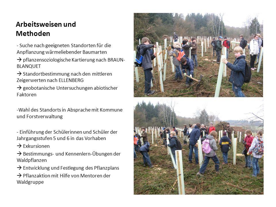 Arbeitsweisen und Methoden - Suche nach geeigneten Standorten für die Anpflanzung wärmeliebender Baumarten  pflanzensoziologische Kartierung nach BRA