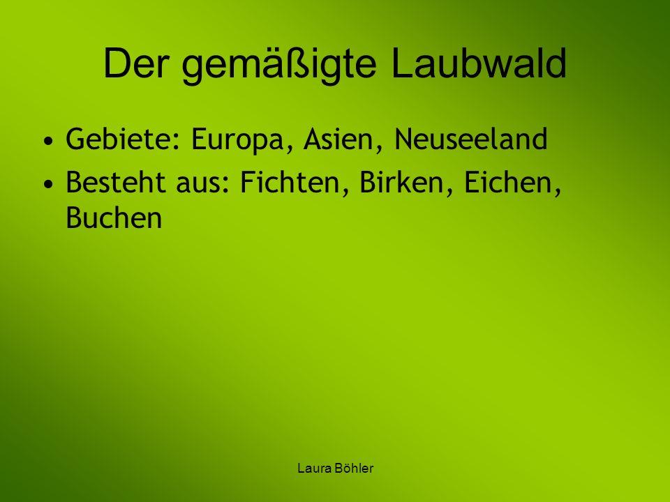 Laura Böhler Der gemäßigte Laubwald Gebiete: Europa, Asien, Neuseeland Besteht aus: Fichten, Birken, Eichen, Buchen