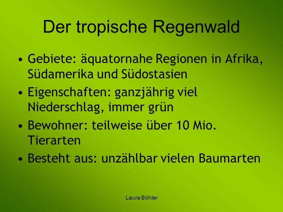 Laura Böhler Der tropische Regenwald Gebiete: äquatornahe Regionen in Afrika, Südamerika und Südostasien Eigenschaften: ganzjährig viel Niederschlag,