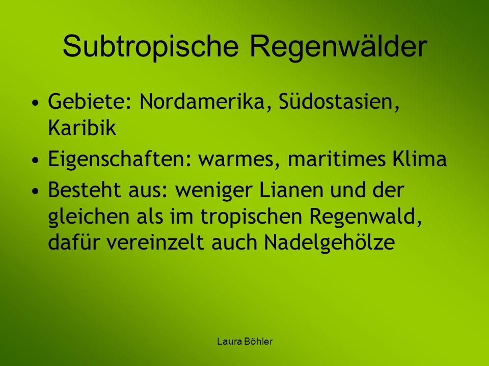 Laura Böhler Subtropische Regenwälder Gebiete: Nordamerika, Südostasien, Karibik Eigenschaften: warmes, maritimes Klima Besteht aus: weniger Lianen un