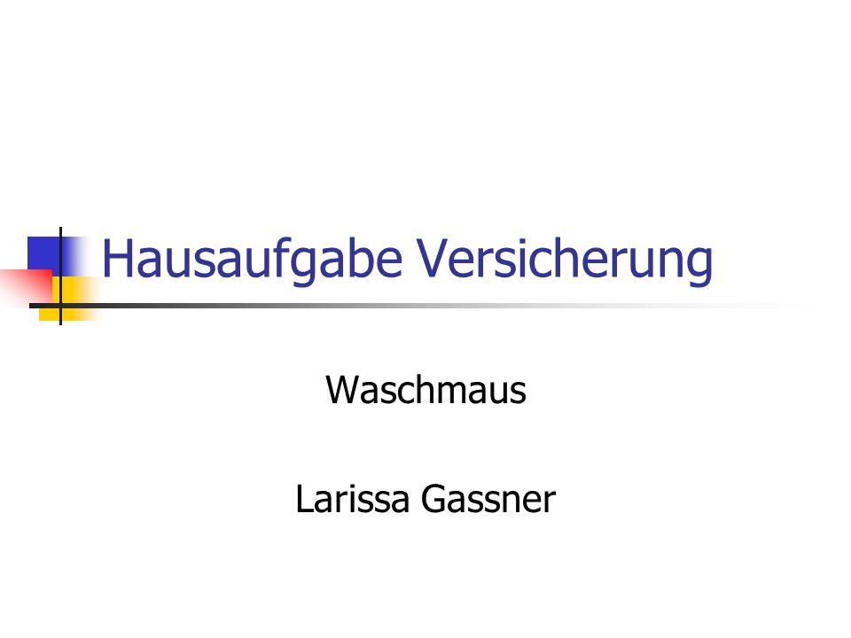 Hausaufgabe Versicherung Waschmaus Larissa Gassner