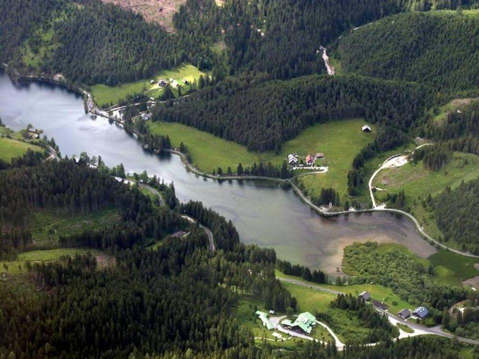 Der Hubertus-See liegt im Grenzgebiet zwischen Steiermark und Niederösterreich.