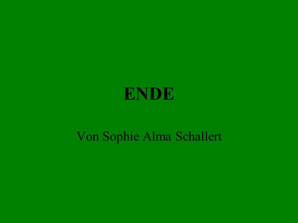 ENDE Von Sophie Alma Schallert