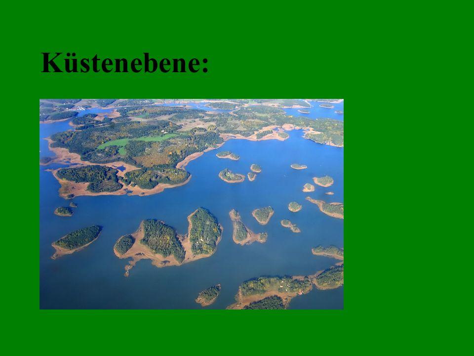 Küstenebene: