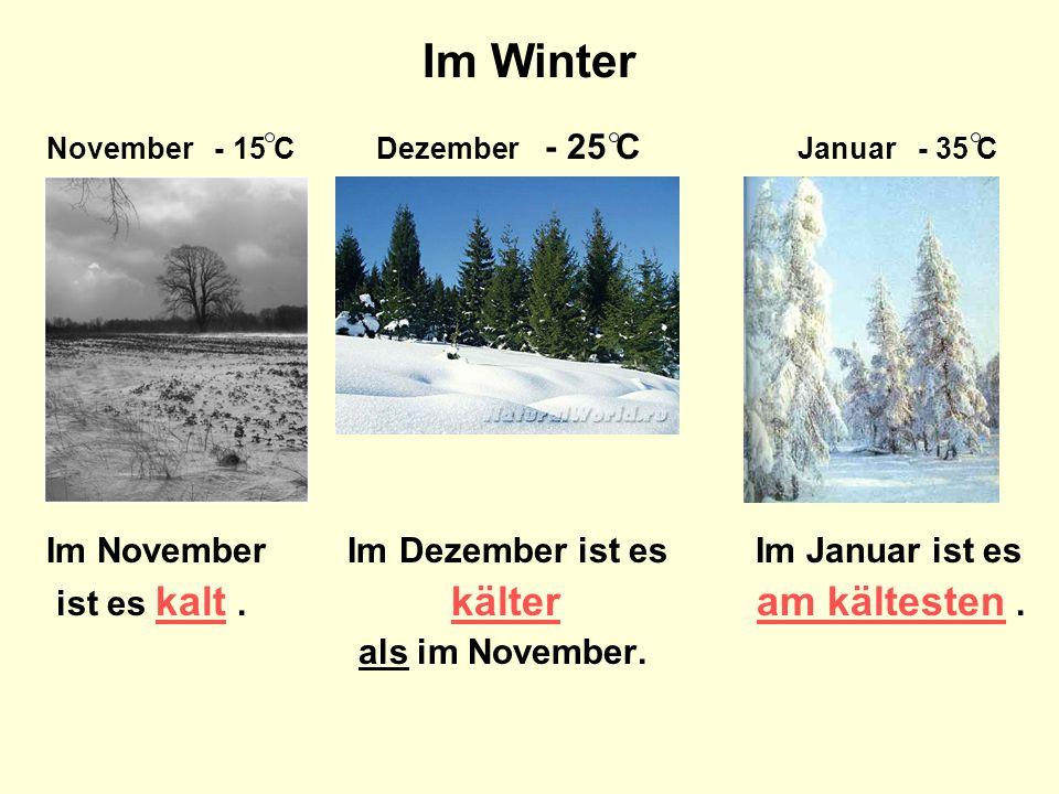 Im Winter November - 15 C Dezember - 25 C Januar - 35 C Im November Im Dezember ist es Im Januar ist es ist es kalt.