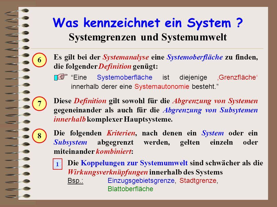 Diese Definition gilt sowohl für die Abgrenzung von Systemen gegeneinander als auch für die Abgrenzung von Subsytemen innerhalb komplexer Hauptsysteme