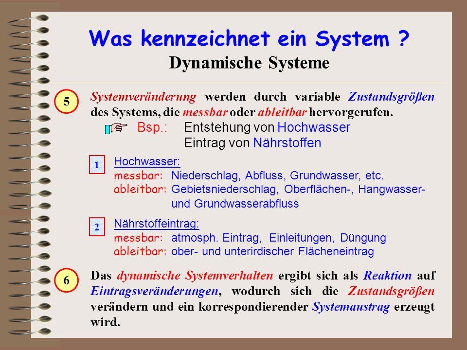 Was kennzeichnet ein System ? Dynamische Systeme Systemveränderung werden durch variable Zustandsgrößen des Systems, die messbar oder ableitbar hervor