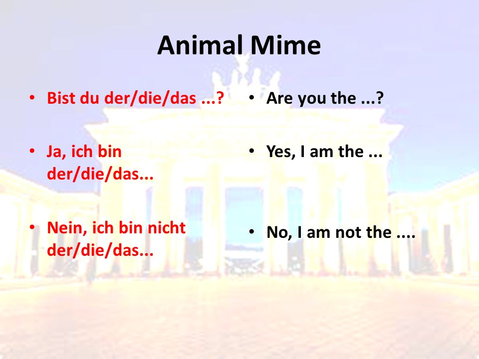 Animal Mime Bist du der/die/das...? Ja, ich bin der/die/das... Nein, ich bin nicht der/die/das... Are you the...? Yes, I am the... No, I am not the...