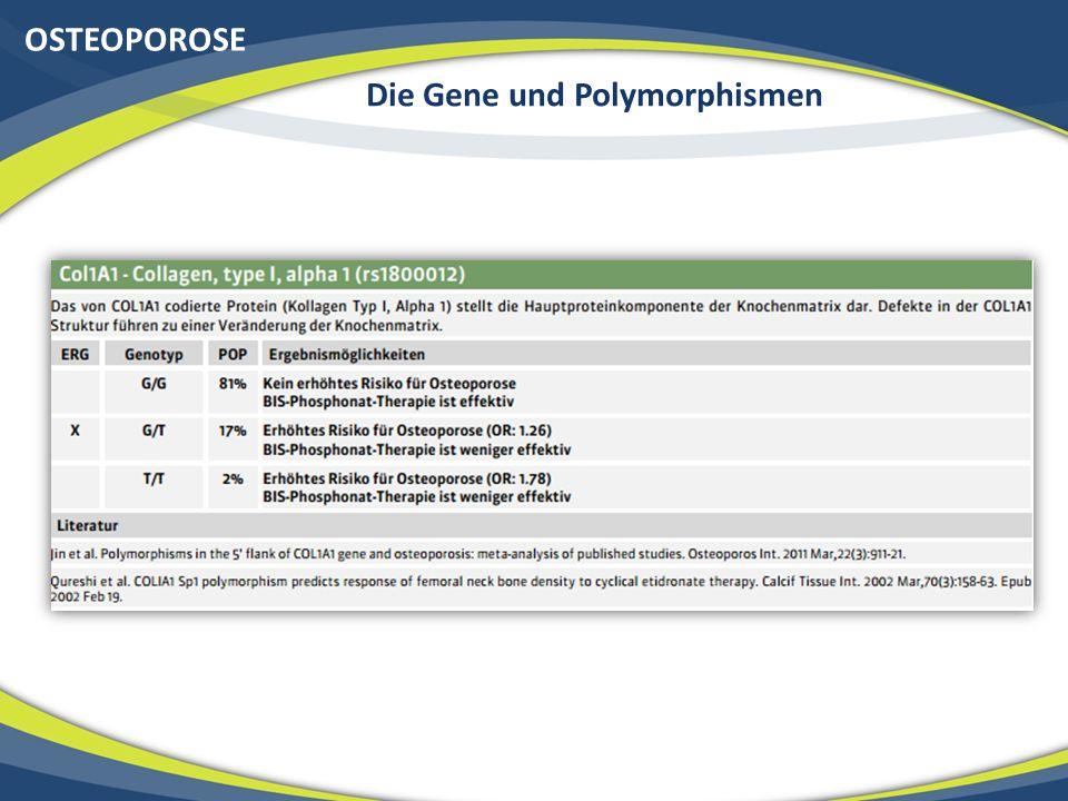 OSTEOPOROSE Die Gene und Polymorphismen