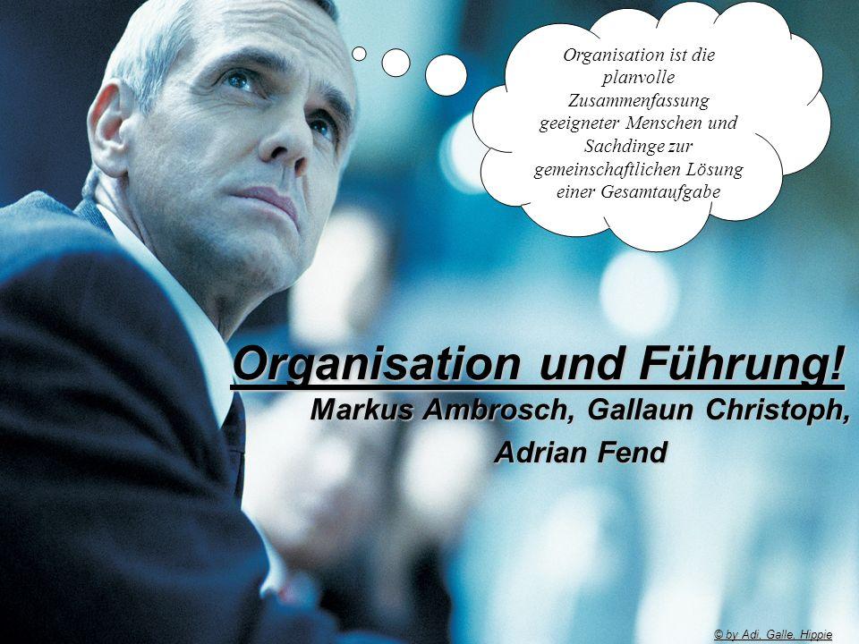 1 Organisation und Führung! Markus Ambrosch, Gallaun Christoph, Adrian Fend Organisation ist die planvolle Zusammenfassung geeigneter Menschen und Sac