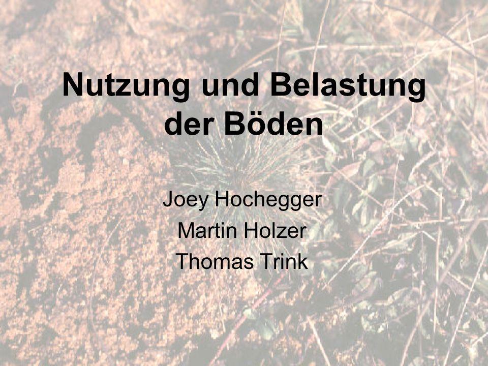 Nutzung und Belastung der Böden Joey Hochegger Martin Holzer Thomas Trink