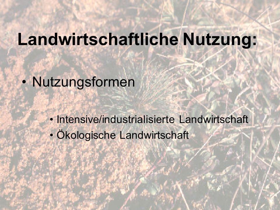 Landwirtschaftliche Nutzung: Nutzungsformen Intensive/industrialisierte Landwirtschaft Ökologische Landwirtschaft
