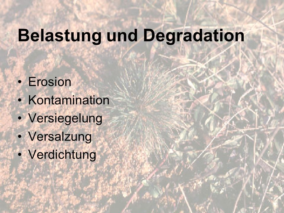 Belastung und Degradation Erosion Kontamination Versiegelung Versalzung Verdichtung