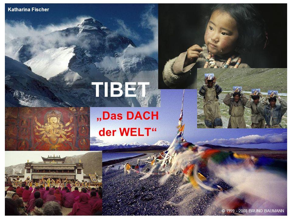 """TIBET """"Das DACH der WELT"""" © 1999 - 2008 BRUNO BAUMANN Katharina Fischer"""