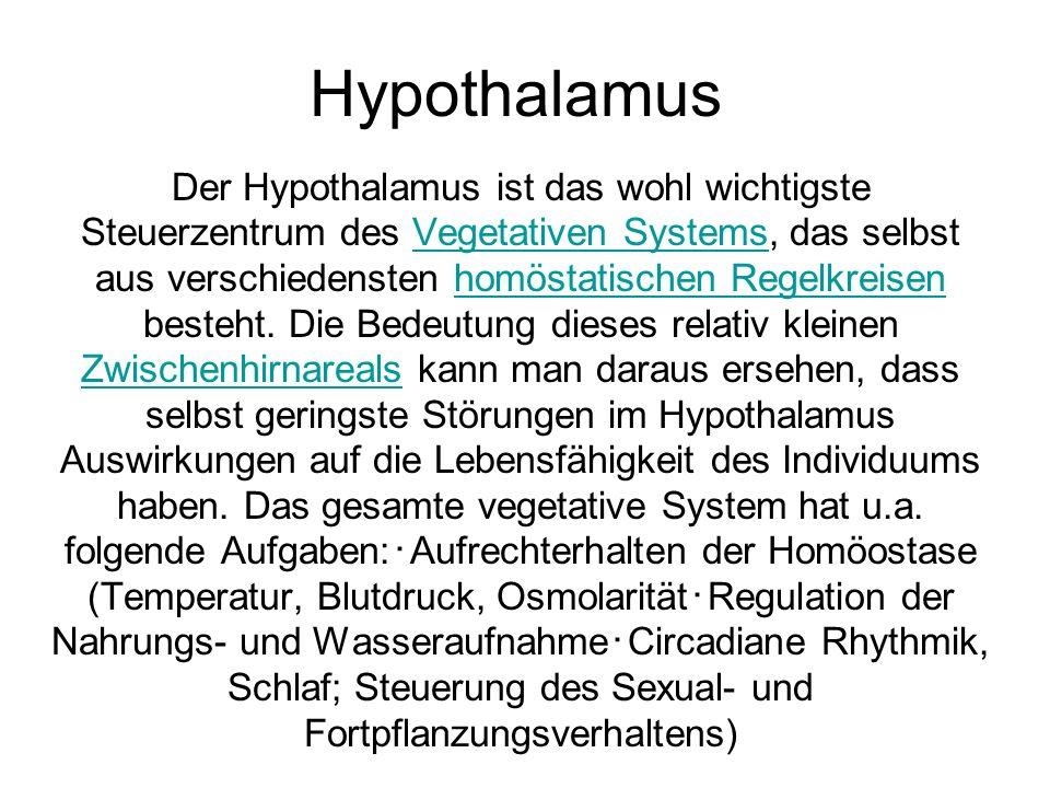 Hypothalamus Der Hypothalamus ist das wohl wichtigste Steuerzentrum des Vegetativen Systems, das selbst aus verschiedensten homöstatischen Regelkreisen besteht.