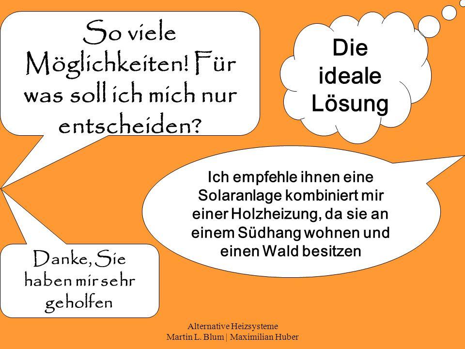 Alternative Heizsysteme Martin L. Blum | Maximilian Huber So viele Möglichkeiten.