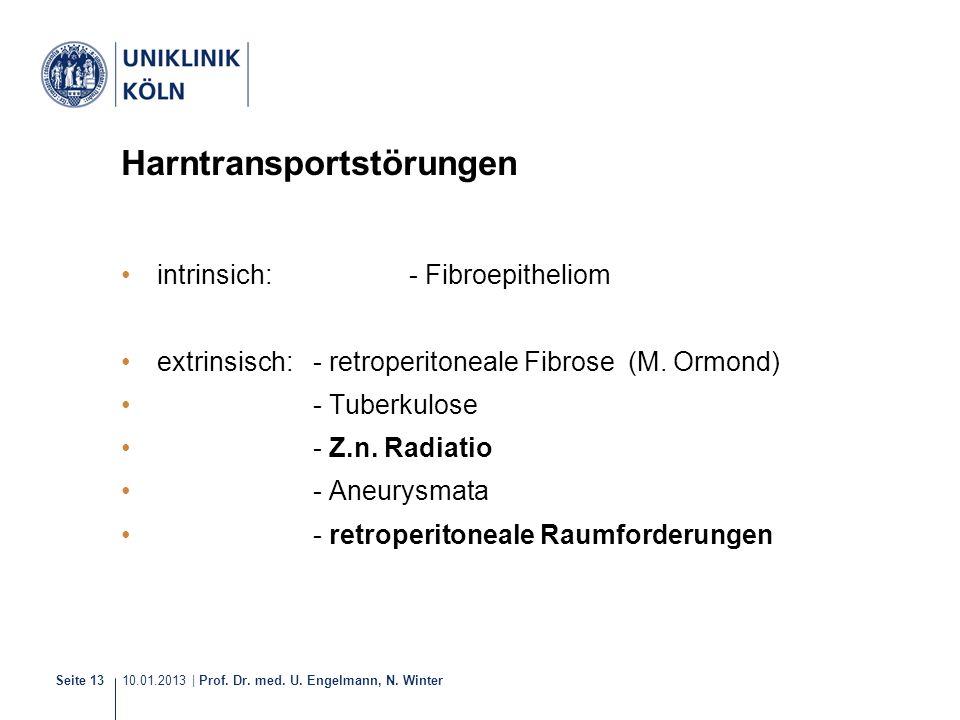 10.01.2013 | Prof. Dr. med. U. Engelmann, N. Winter Seite 13 Harntransportstörungen intrinsich: - Fibroepitheliom extrinsisch: - retroperitoneale Fibr
