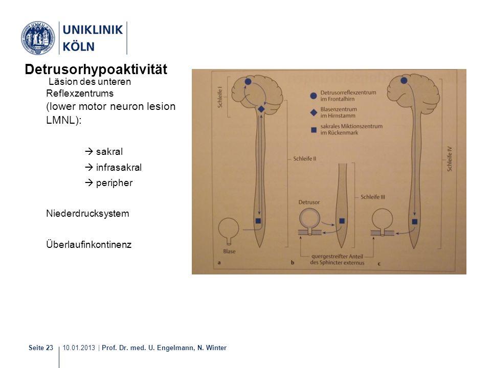 10.01.2013 | Prof. Dr. med. U. Engelmann, N. Winter Seite 23 Detrusorhypoaktivität Läsion des unteren Reflexzentrums (lower motor neuron lesion LMNL):