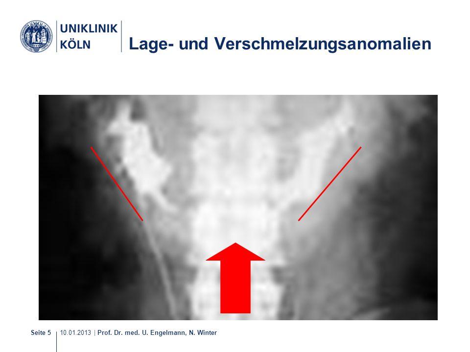 10.01.2013 | Prof. Dr. med. U. Engelmann, N. Winter Seite 5 Lage- und Verschmelzungsanomalien