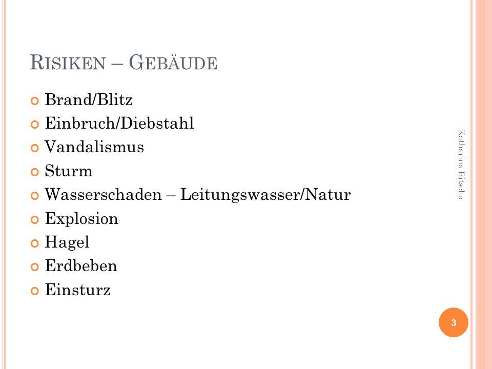 R ISIKEN – G EBÄUDE Brand/Blitz Einbruch/Diebstahl Vandalismus Sturm Wasserschaden – Leitungswasser/Natur Explosion Hagel Erdbeben Einsturz 3 Katharin