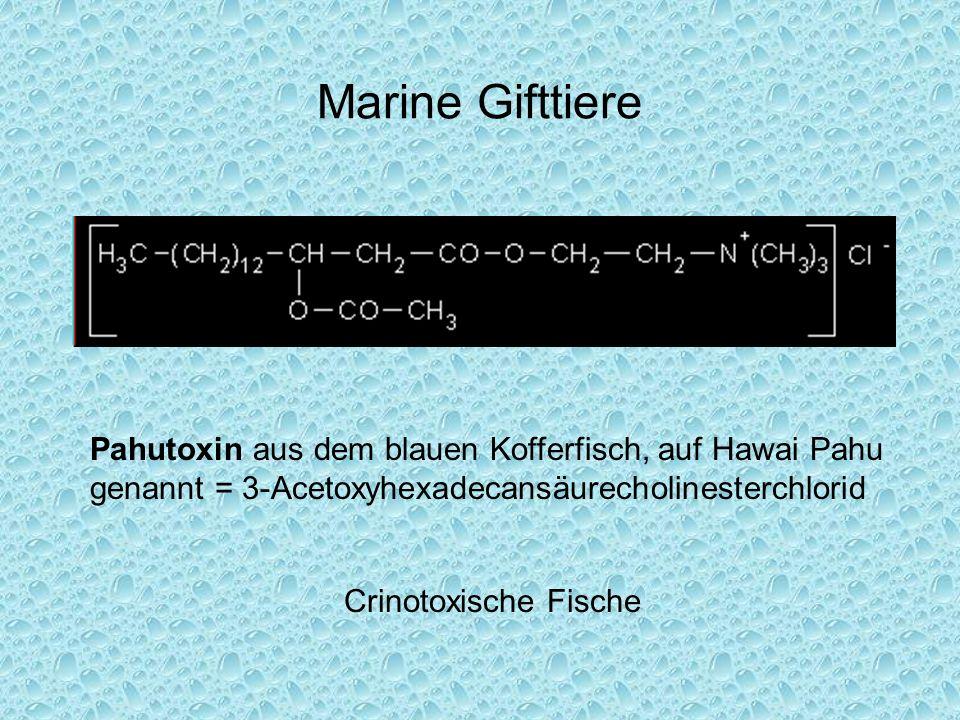 Marine Gifttiere Crinotoxische Fische Pahutoxin aus dem blauen Kofferfisch, auf Hawai Pahu genannt = 3-Acetoxyhexadecansäurecholinesterchlorid