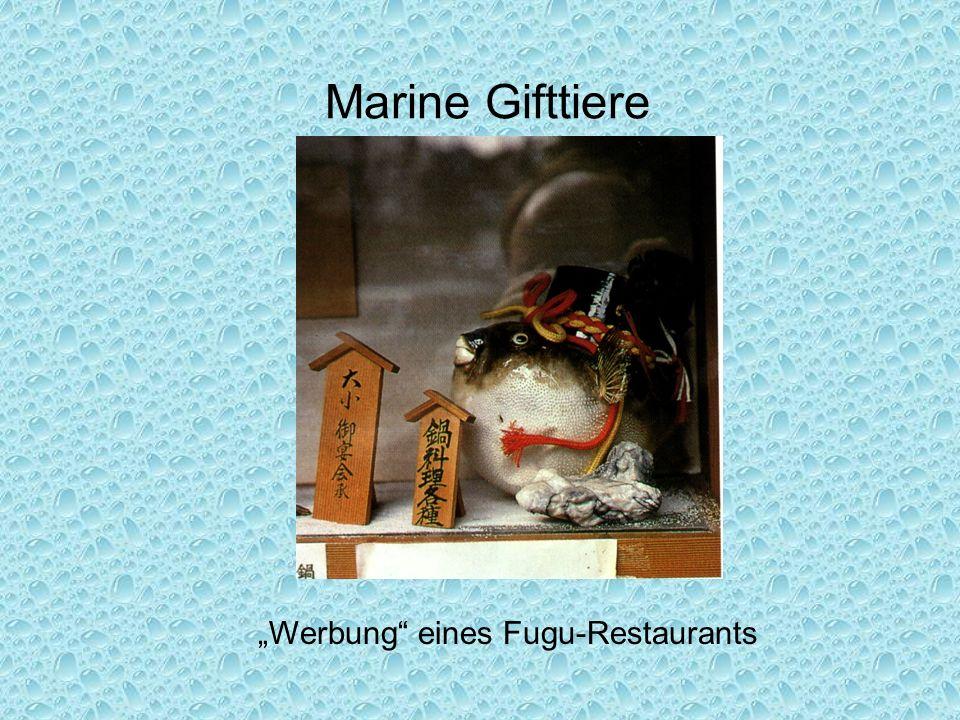 """Marine Gifttiere """"Werbung"""" eines Fugu-Restaurants"""