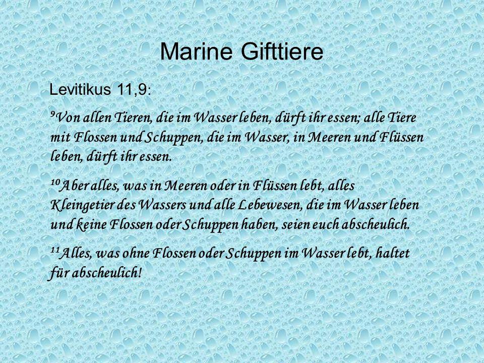 Levitikus 11,9 : 9 Von allen Tieren, die im Wasser leben, dürft ihr essen; alle Tiere mit Flossen und Schuppen, die im Wasser, in Meeren und Flüssen l