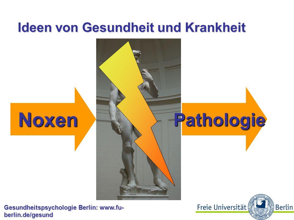 Gesundheitspsychologie Berlin: www.fu- berlin.de/gesund Kontinuierliche Modelle Health Belief Model (Becker, 1974; Rosenstock, 1966) Theory of Reasoned Action (Fishbein & Ajzen, 1975) Theory of Planned Behaviour (Ajzen, 1988) Protection Motivation Theory (Rogers, 1983; Rogers & Maddux, 1983)