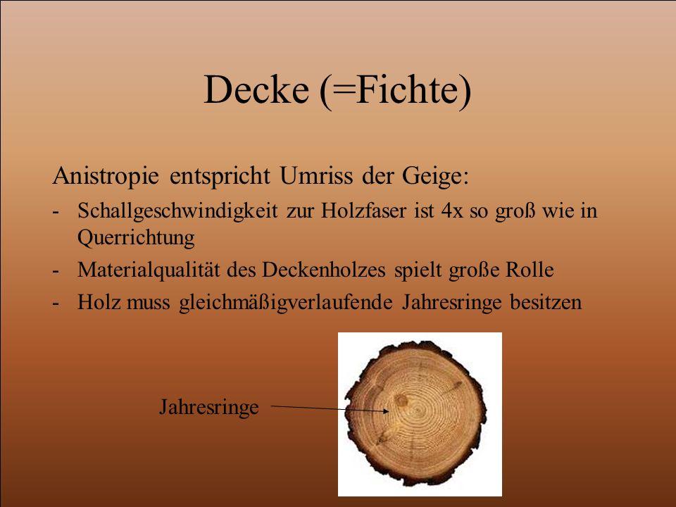 Decke (=Fichte) Anistropie entspricht Umriss der Geige: -Schallgeschwindigkeit zur Holzfaser ist 4x so groß wie in Querrichtung -Materialqualität des Deckenholzes spielt große Rolle -Holz muss gleichmäßigverlaufende Jahresringe besitzen Jahresringe