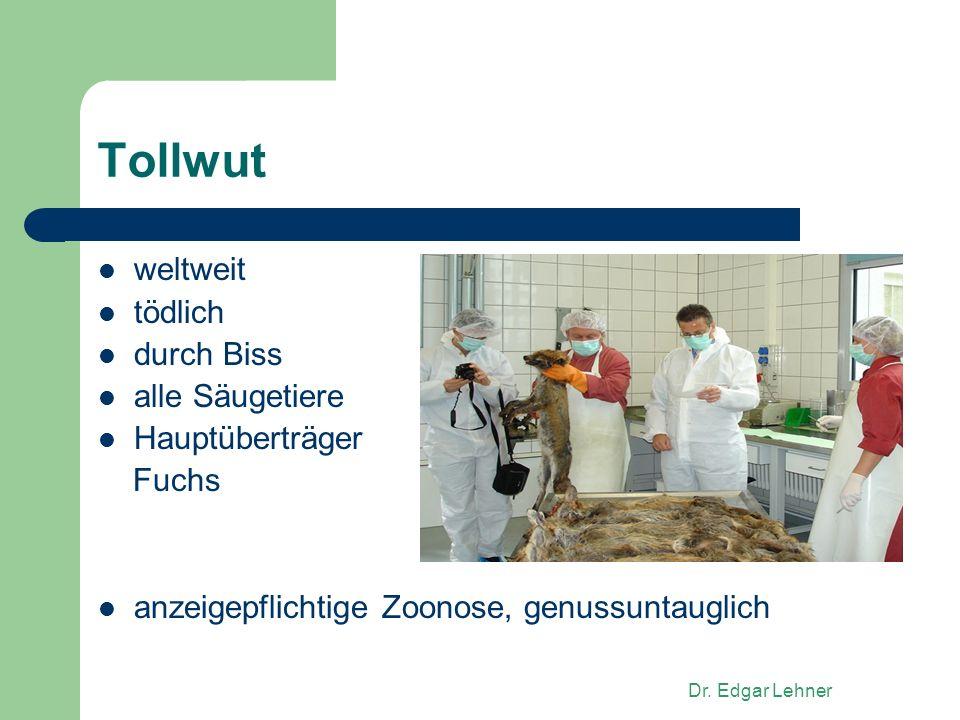 Dr. Edgar Lehner Tollwut weltweit tödlich durch Biss alle Säugetiere Hauptüberträger Fuchs anzeigepflichtige Zoonose, genussuntauglich