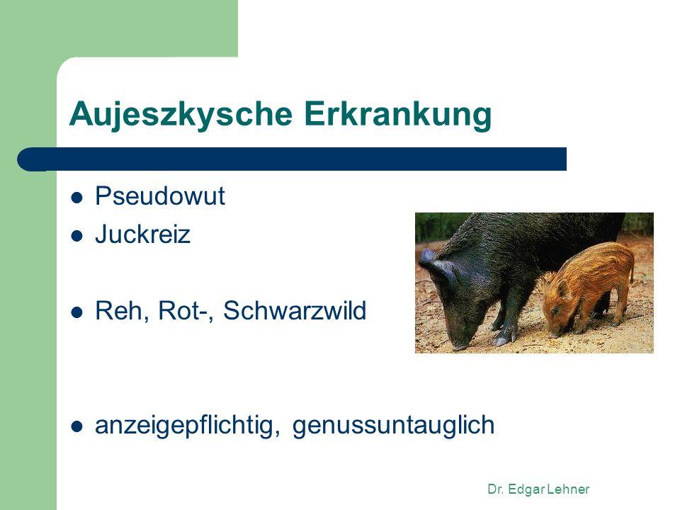 Dr. Edgar Lehner Aujeszkysche Erkrankung Pseudowut Juckreiz Reh, Rot-, Schwarzwild anzeigepflichtig, genussuntauglich
