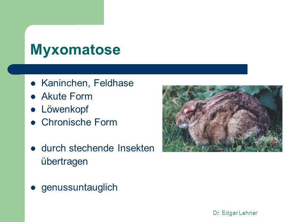 Dr. Edgar Lehner Myxomatose Kaninchen, Feldhase Akute Form Löwenkopf Chronische Form durch stechende Insekten übertragen genussuntauglich