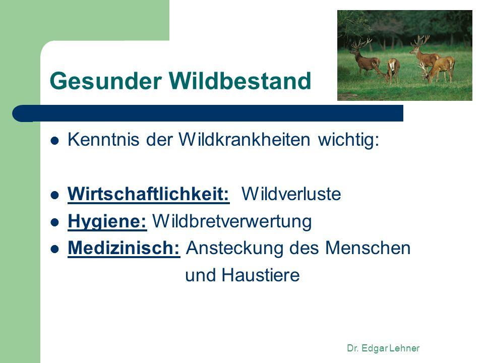 Gesunder Wildbestand Kenntnis der Wildkrankheiten wichtig: Wirtschaftlichkeit: Wildverluste Hygiene: Wildbretverwertung Medizinisch: Ansteckung des Menschen und Haustiere