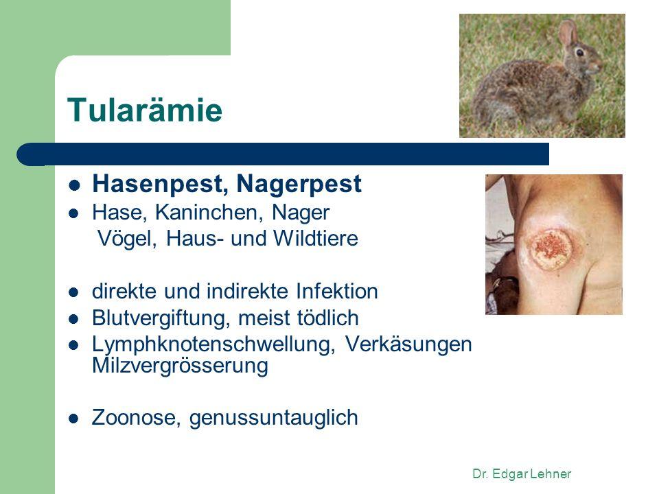 Dr. Edgar Lehner Tularämie Hasenpest, Nagerpest Hase, Kaninchen, Nager Vögel, Haus- und Wildtiere direkte und indirekte Infektion Blutvergiftung, meis