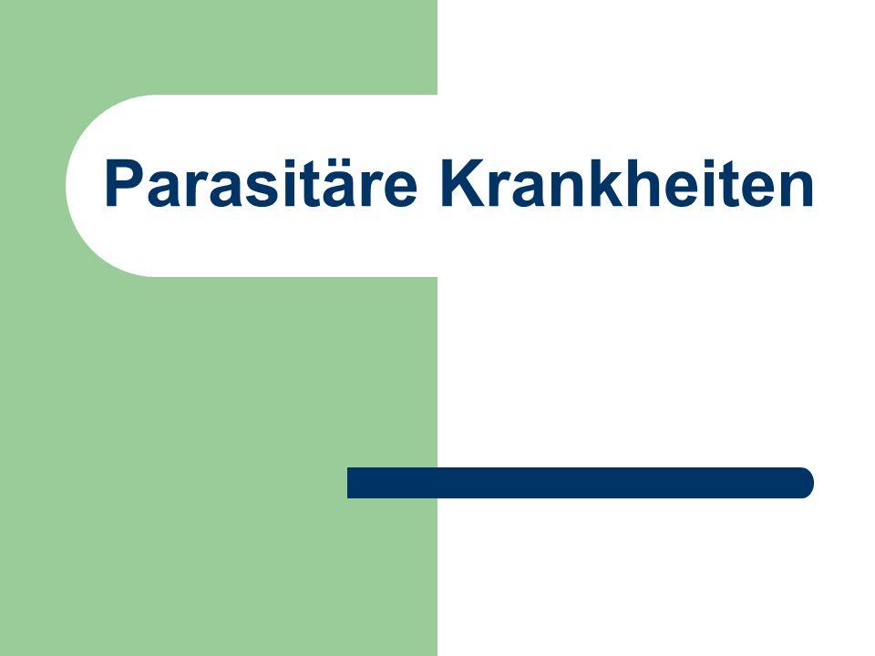 Parasitäre Krankheiten