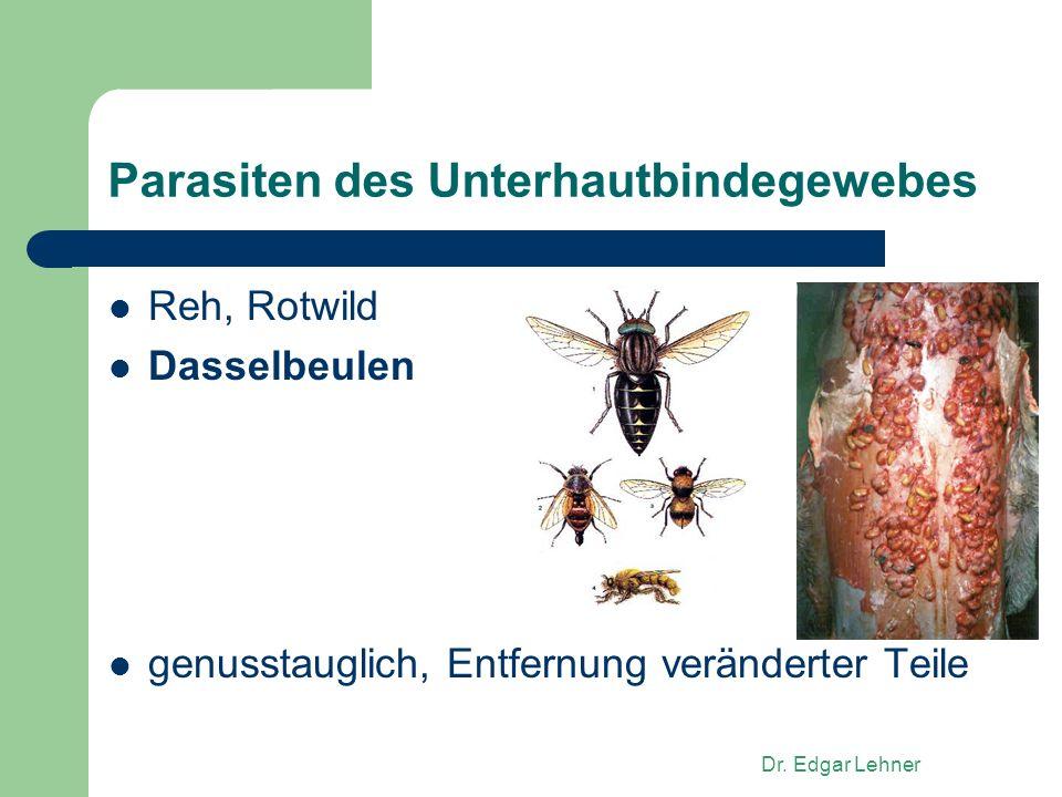 Dr. Edgar Lehner Parasiten des Unterhautbindegewebes Reh, Rotwild Dasselbeulen genusstauglich, Entfernung veränderter Teile