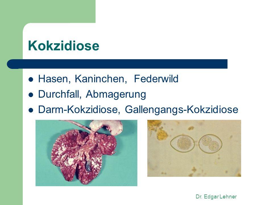 Dr. Edgar Lehner Kokzidiose Hasen, Kaninchen, Federwild Durchfall, Abmagerung Darm-Kokzidiose, Gallengangs-Kokzidiose