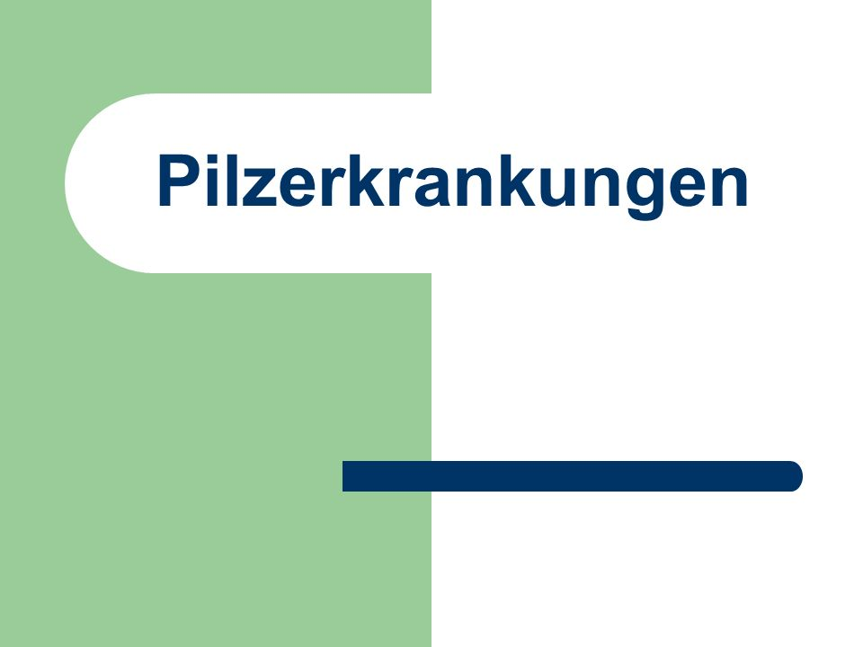 Pilzerkrankungen