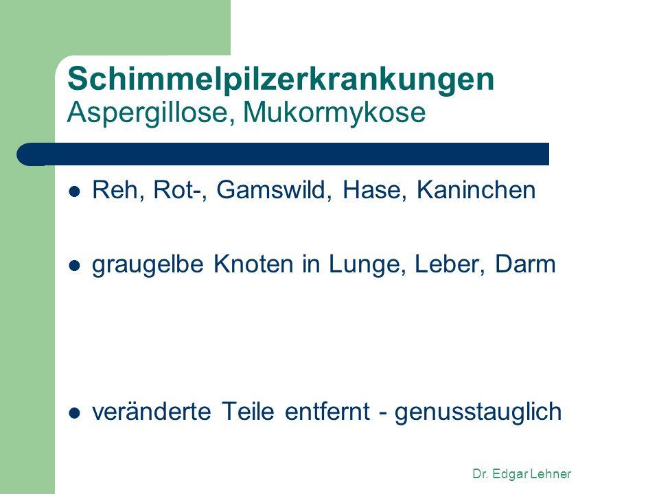 Dr. Edgar Lehner Schimmelpilzerkrankungen Aspergillose, Mukormykose Reh, Rot-, Gamswild, Hase, Kaninchen graugelbe Knoten in Lunge, Leber, Darm veränd